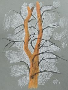 Зарисовка, дерево