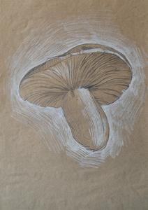 Зарисовка сыроежки