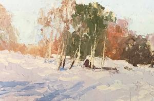 Тень на снегу