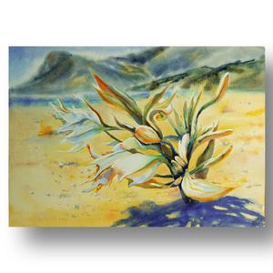 Песчаные лилии