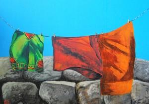 Одежда на ветру